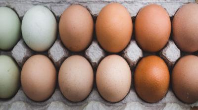 Eggs for Quiche Recipe