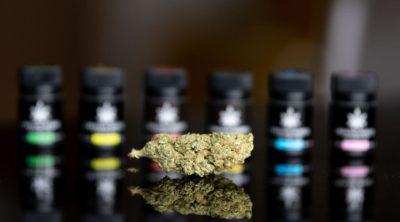 cbd oil headaches cannabis